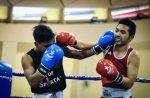 Капа в боксе – Рейтинг лучших кап для бокса